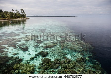 A shallow coral reef drops precipitously into the depths in Wakatobi National Park, Indonesia. This remote area harbors an extraordinary amount of marine biodiversity.