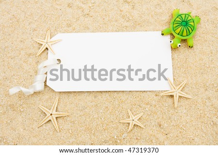A turtle and starfish sitting on a sand background, starfish and turtle
