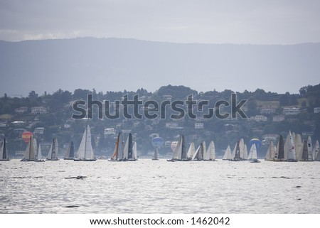 A very large boat  race on the geneva lake. Is the biggest european race on lake compete by six hundred boat.