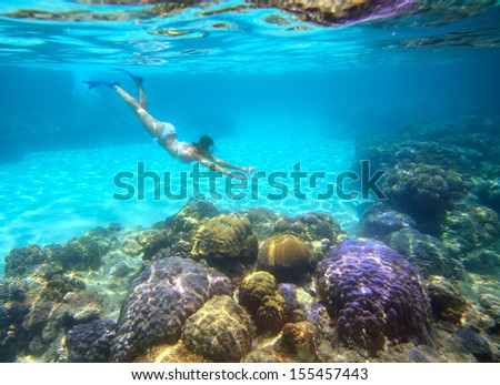A woman snorkeling in the beautiful coral reef with lots of fish.