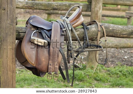 abandoned saddle