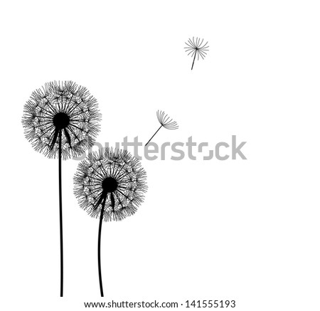 abstract dandelion background   illustration