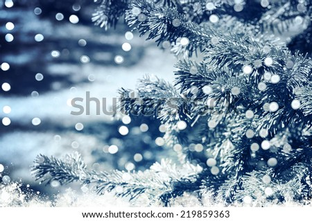 abstract fir tree background