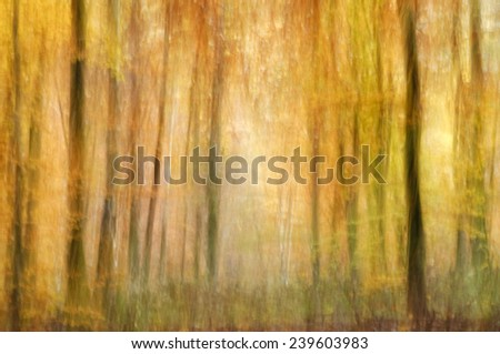 Abstract image of autumn forest - the effect of camera motion.
