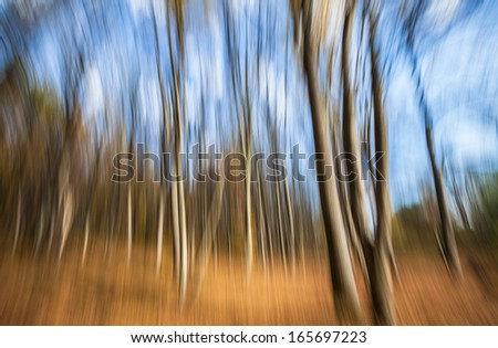 Abstract image of trees in an autumn forest. Intentional motion blur