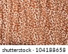 Abstract Leopard texture closeup - stock photo
