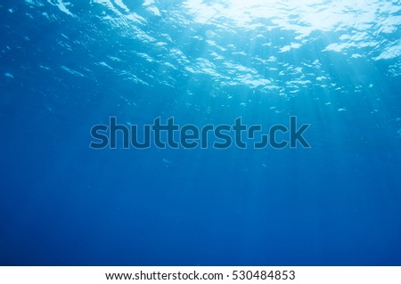 Abstract underwater scene of Red sea, Egypt.