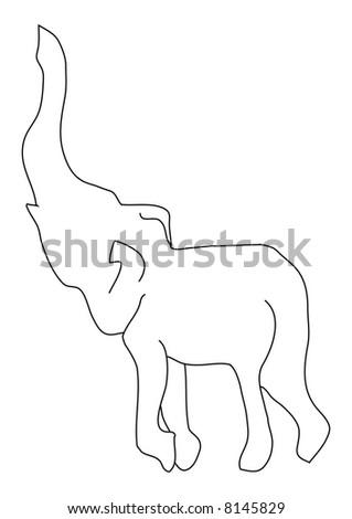 Adorable Elephant Calf...