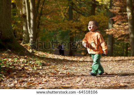 Adorable toddler boy in autumn forest