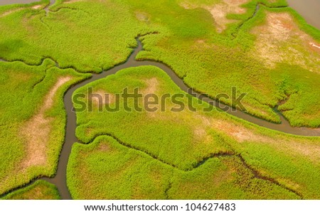Aerial view of lush coastal wetlands