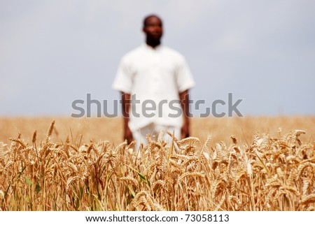 African man in the middle of wheat field