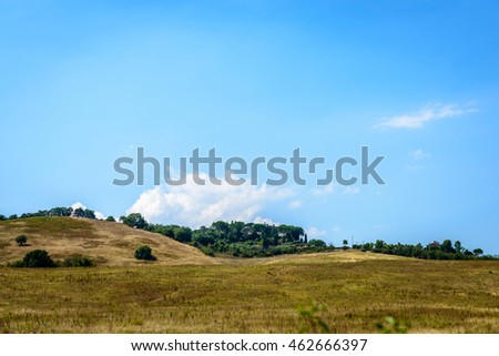 Agreeable hills with bushes under a blue sky