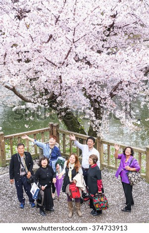 AICHI-JAPAN MARCH 28, 2015 : Tourist at the Inuyama Castle park in spring time with cherry blossoms