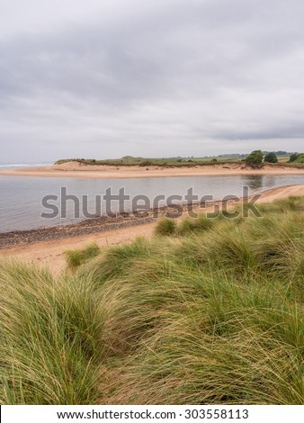 Alnmouth Beach, Alnmouth, Northumberland, UK