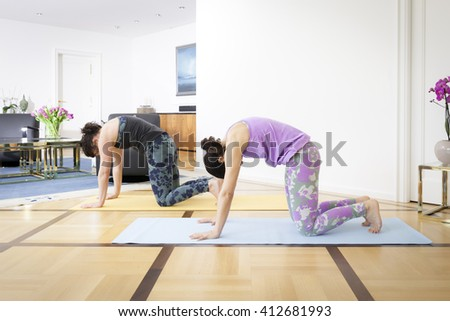 An image of two women doing yoga at home cat pose