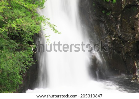 An Image of Waterfall