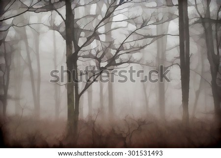 An original photograph of the foggy woods in the Poconos of Pennsylvania transformed into a digital illustration
