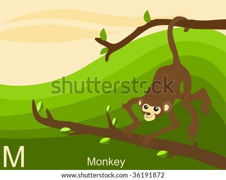 Ecosystemdiagram Stock Vector 215219293 Shutterstock