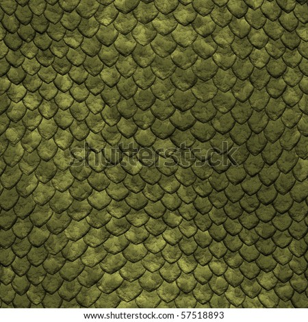 Animal Scales