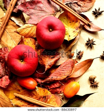 Apple and autumn leaf
