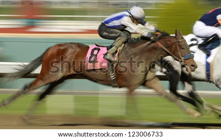 "ARCADIA, CA - DEC 26: Rafael Bejarano (black cap) and ""Book Review"" move up on the far turn to overtake the lead horses and win The La Brea Stakes at Santa Anita Park on Dec 26, 2012 in Arcadia, CA."