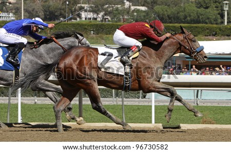 "ARCADIA, CA - MARCH 3: Jockey Martin Garcia and ""Stirred Up"" outrun Mike Smith and ""Holy Candy"" to win a maiden race Santa Anita Race Track on March 3, 2012 in Arcadia, CA."