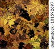art graphic leaves autumn background card in yellow, orange, brown and black colors - stock photo