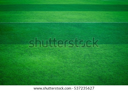 artificial turf of Soccer football field