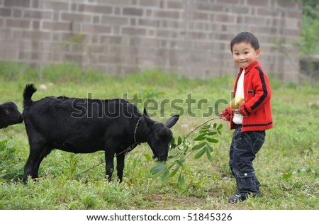 asian boy and black goat