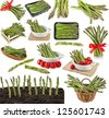 asparagus sprout vegetable - collection set of images  isolated on a white background - stock photo