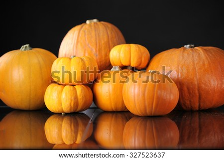 Assorted pumpkin display