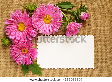 Asters and a card on brown canvas background