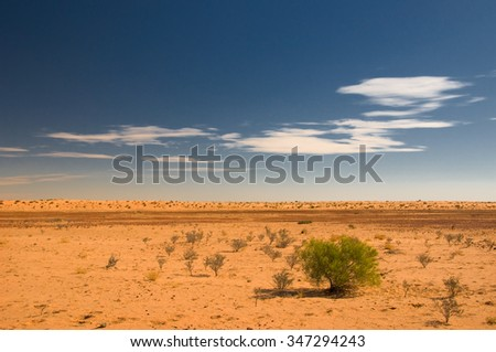 At the Birdsville Track, South Australia, Australia