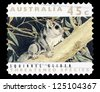 """AUSTRALIA - CIRCA 1992: A stamp printed in Australia shows a Squirrel glider with the same inscriptions, from the series """"Threatened Species"""", circa 1992 - stock photo"""