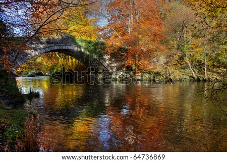 Autumn at Ogwen Bank near Bethesda in the heart of Snowdonia Wales