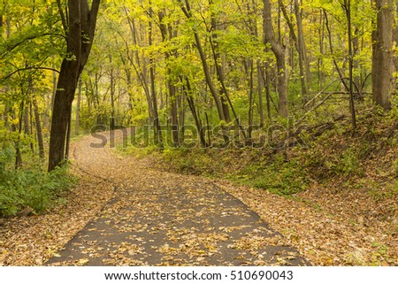 Autumn Bike Trail In The Woods