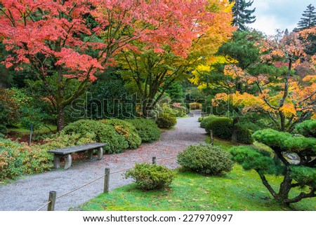 Autumn Colors with Park Bench and Walking Path in Arboretum Garden