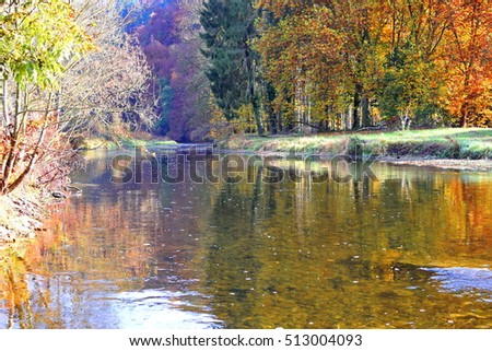 Autumn day near river in Belgium natural