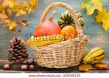 autumn decoration with pumpkin and leaves