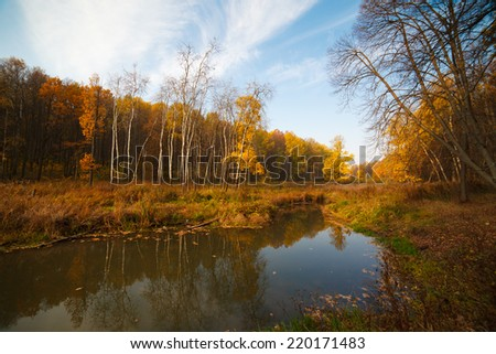 Autumn landscape with forest reflection in lake