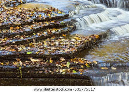 Autumn leaves on slate stone at the waterfall