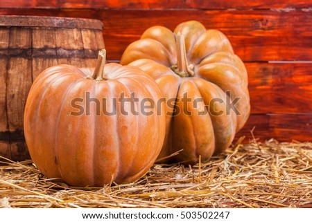Autumn Pumpkin Thanksgiving Background . Orange pumpkins over wooden table.Pumpkins and straw in old barn. Horizontal image