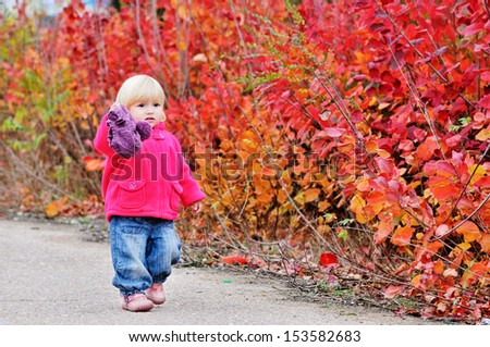 autumn toddler walk along bright bushes