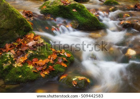 Autumnal riverbed of shallow creek in the mountains