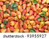 Background of ripe pears. Yellow red pears on the table. - stock photo