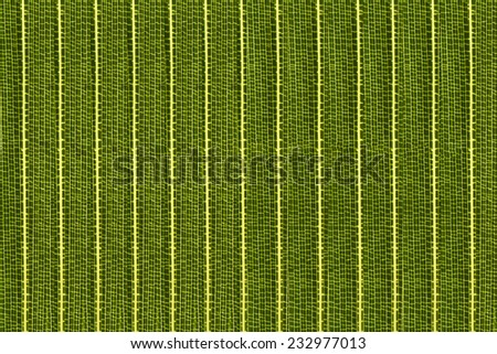 Bamboo Leaf Texture Background Pattern
