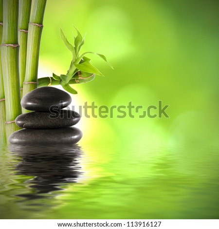 bamboo trunks, fund spa decoration