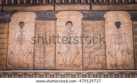 Bangkok - Thailand , August 25 - 2016 : Paintings from temple Wat Pho teach Acupuncture and fareast medicine at Wat Phra Chetupon Vimolmangklararm (Wat Pho) temple in Thailand.