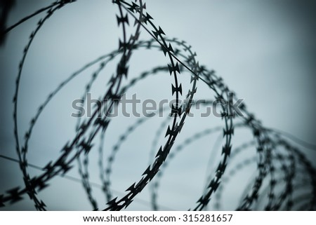 Barbed wire with cold sky