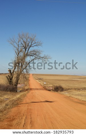 Bare tree beside a hilly red dirt road